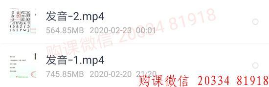 2020有道考神雅思冲7分全程班(旗舰版):预备阶段发音2